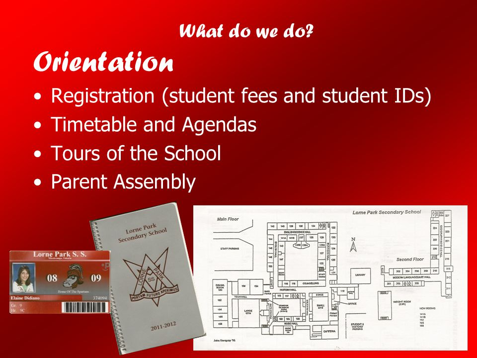 Orientation What do we do Registration (student fees and student IDs)