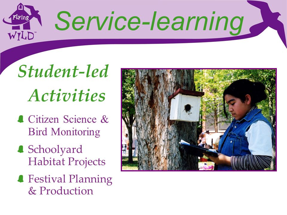 Service-learning Student-led Activities