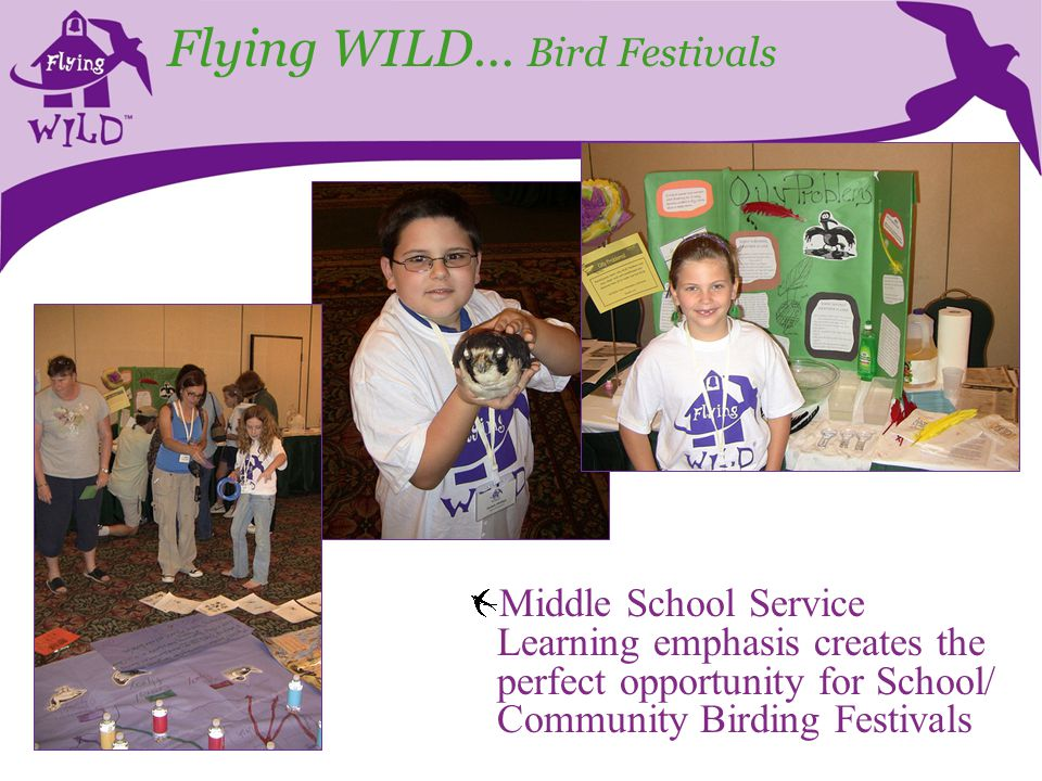 Flying WILD… Bird Festivals