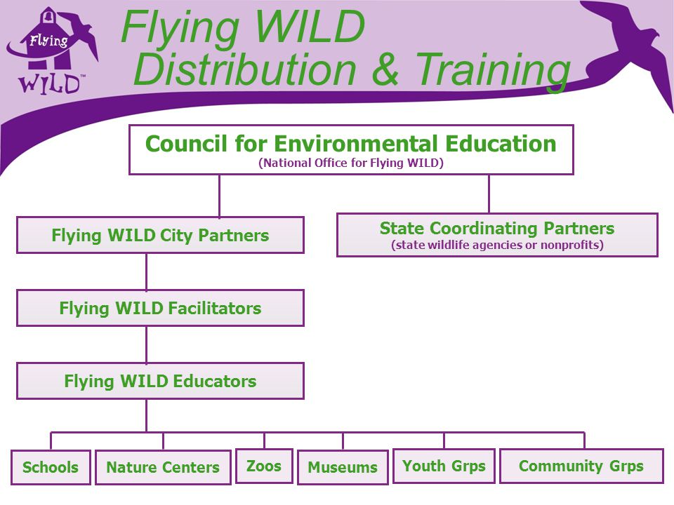 Flying WILD Distribution & Training