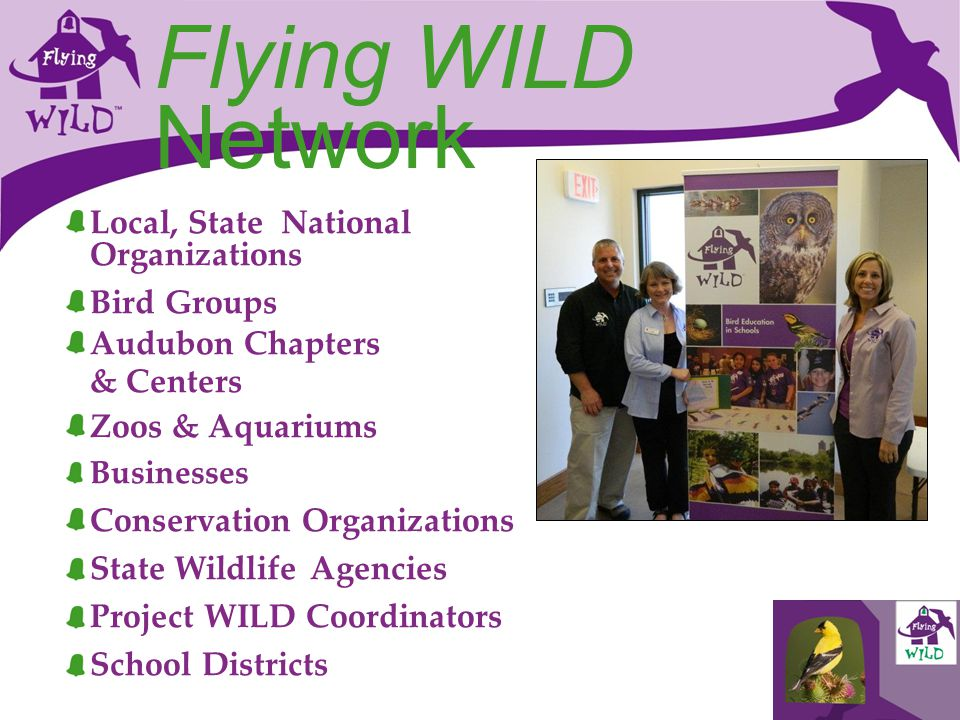 Flying WILD Network Local, State National Organizations Bird Groups