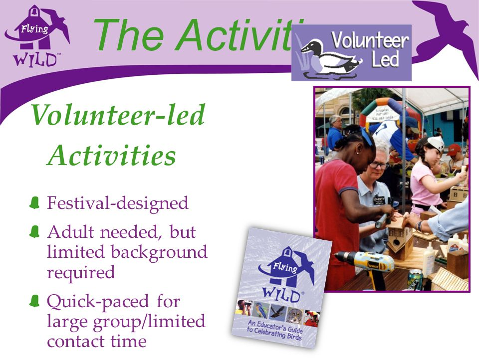The Activities Volunteer-led Activities Festival-designed