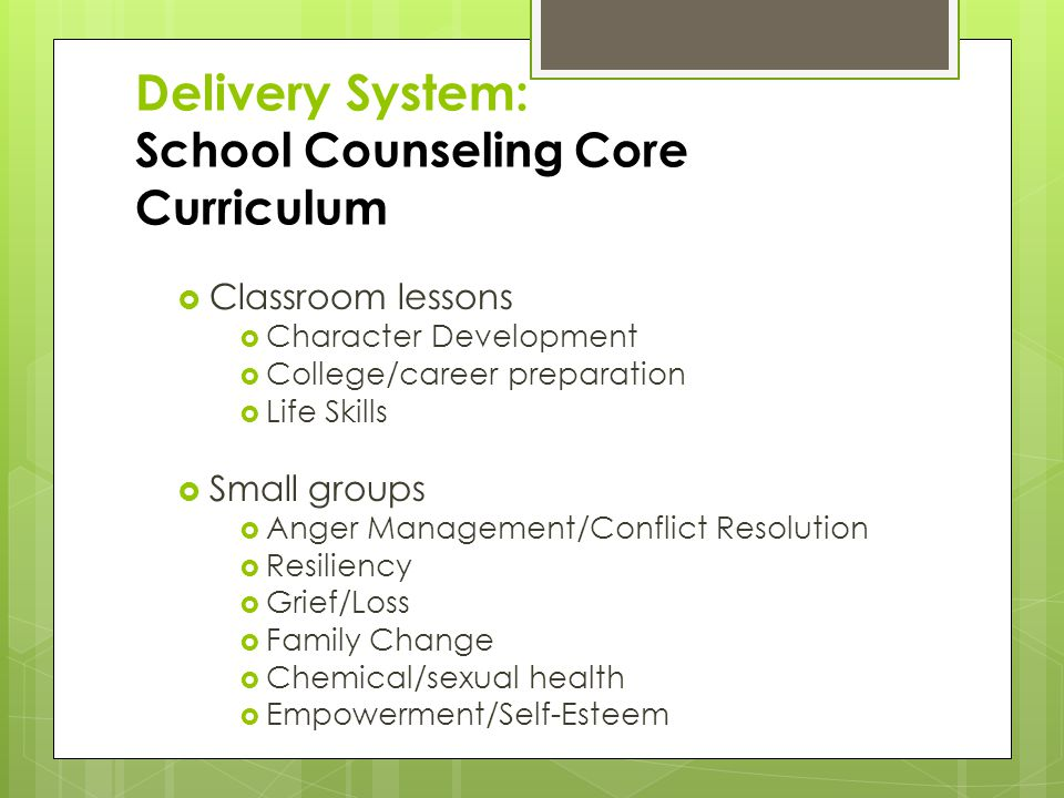 Delivery System: School Counseling Core Curriculum