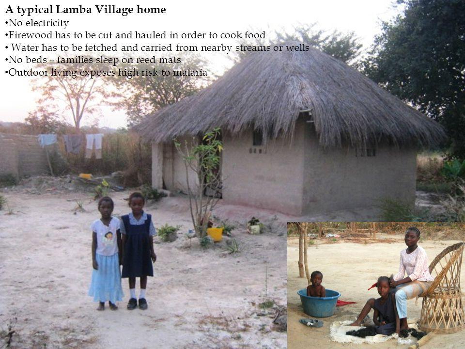 A typical Lamba Village home