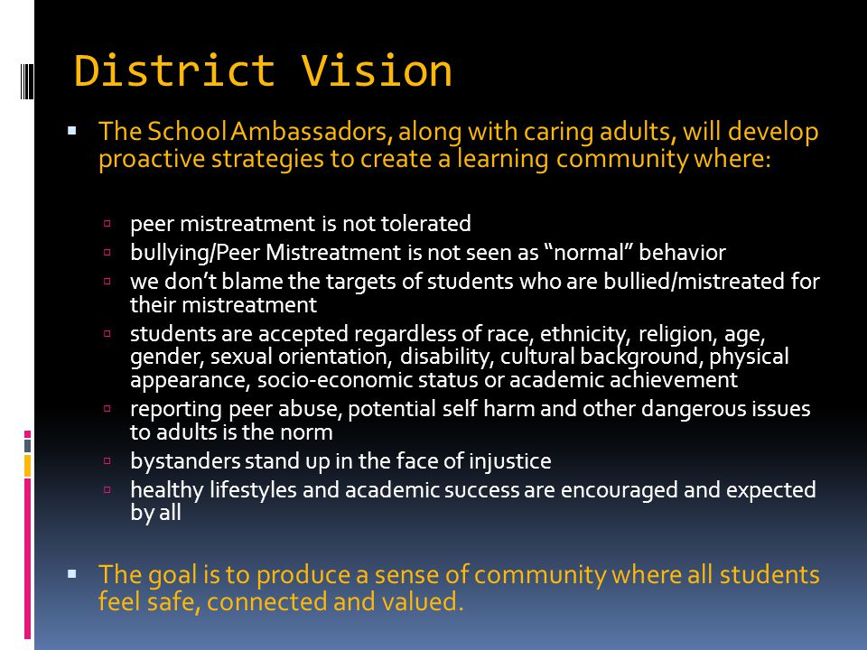 District Vision The School Ambassadors, along with caring adults, will develop proactive strategies to create a learning community where: