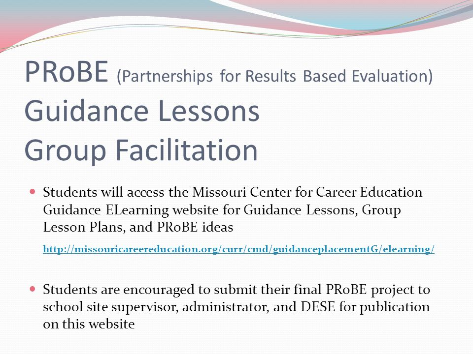 PRoBE (Partnerships for Results Based Evaluation) Guidance Lessons Group Facilitation