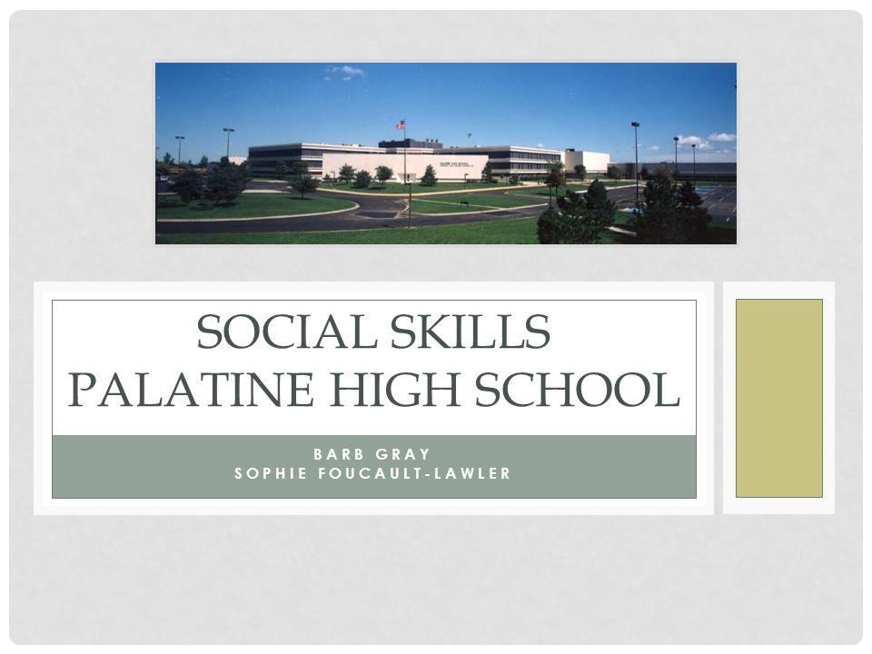 Social Skills Palatine High School