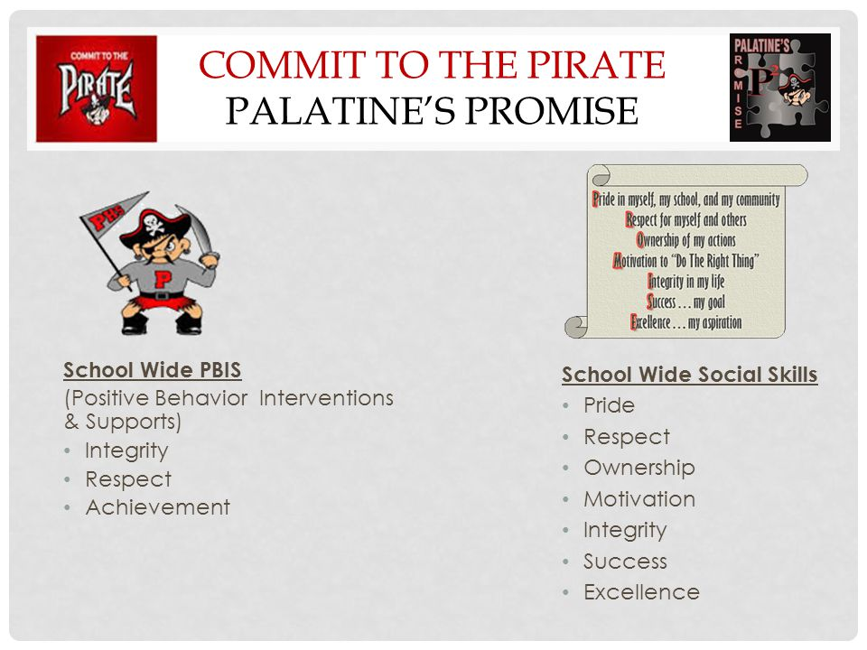 Commit to the PIRATE Palatine's PROMISE