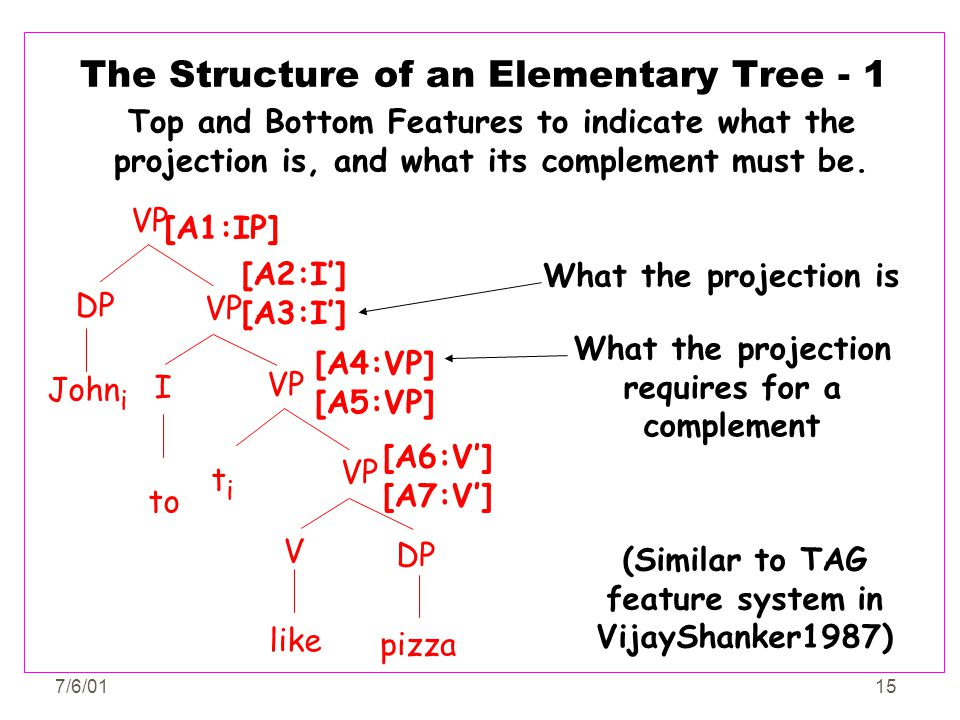 The Structure of an Elementary Tree - 1