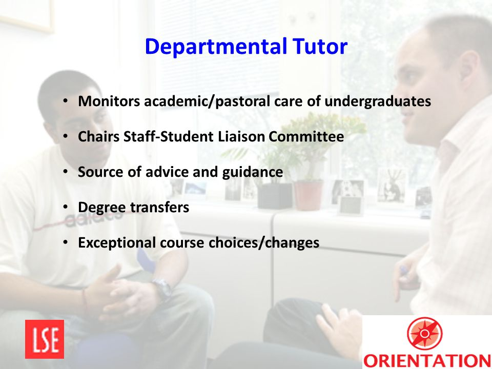 Departmental Tutor Monitors academic/pastoral care of undergraduates