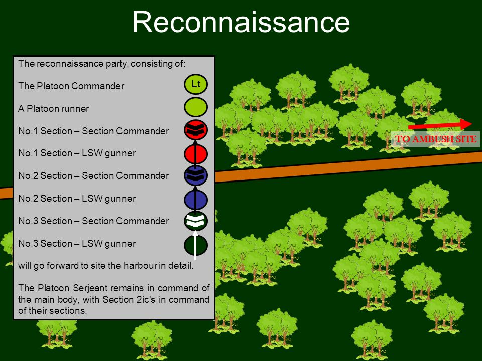 Reconnaissance Lt The reconnaissance party, consisting of: