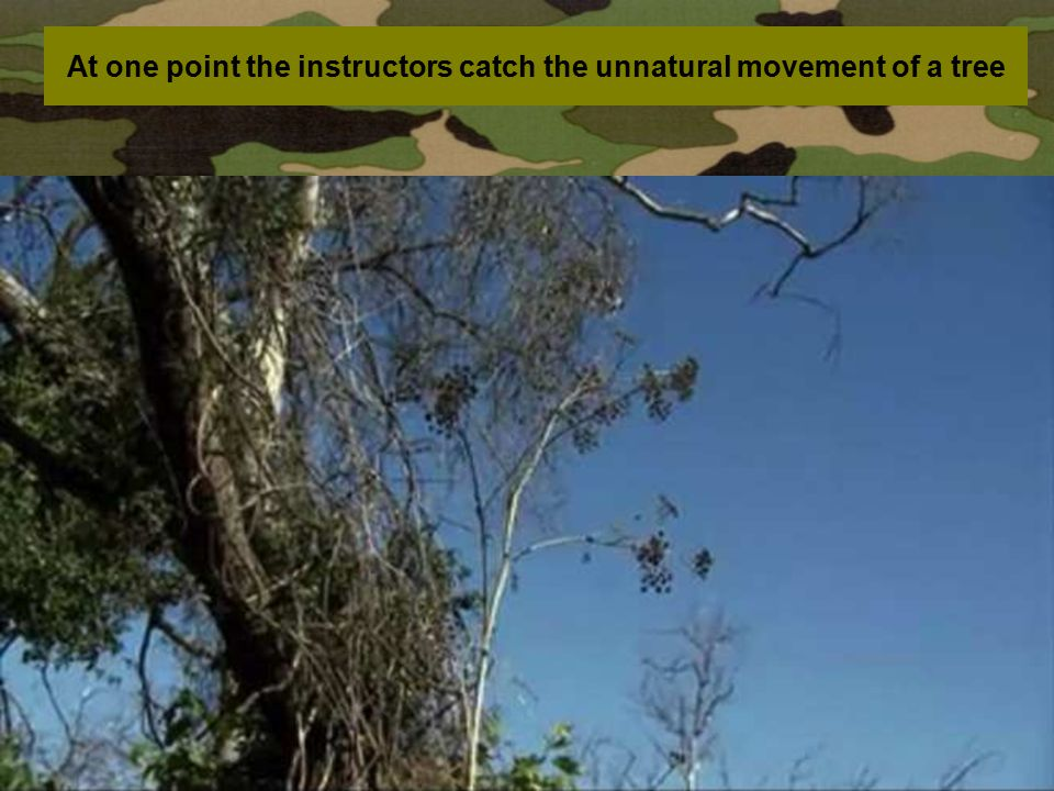 At one point the instructors catch the unnatural movement of a tree