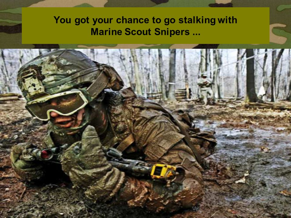 You got your chance to go stalking with Marine Scout Snipers ...