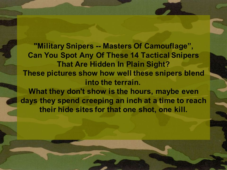 Military Snipers -- Masters Of Camouflage , Can You Spot Any Of These 14 Tactical Snipers That Are Hidden In Plain Sight.