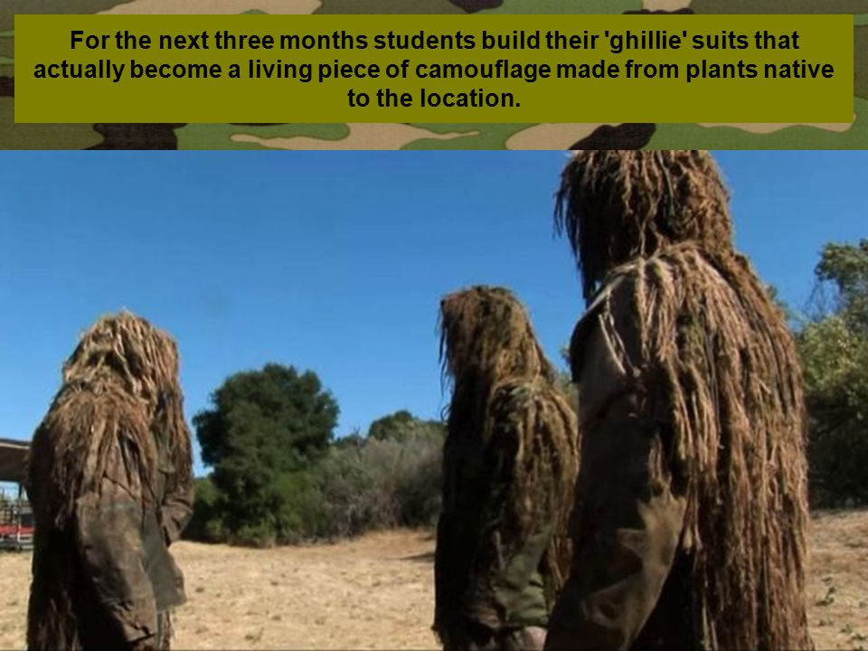 For the next three months students build their ghillie suits that actually become a living piece of camouflage made from plants native to the location.