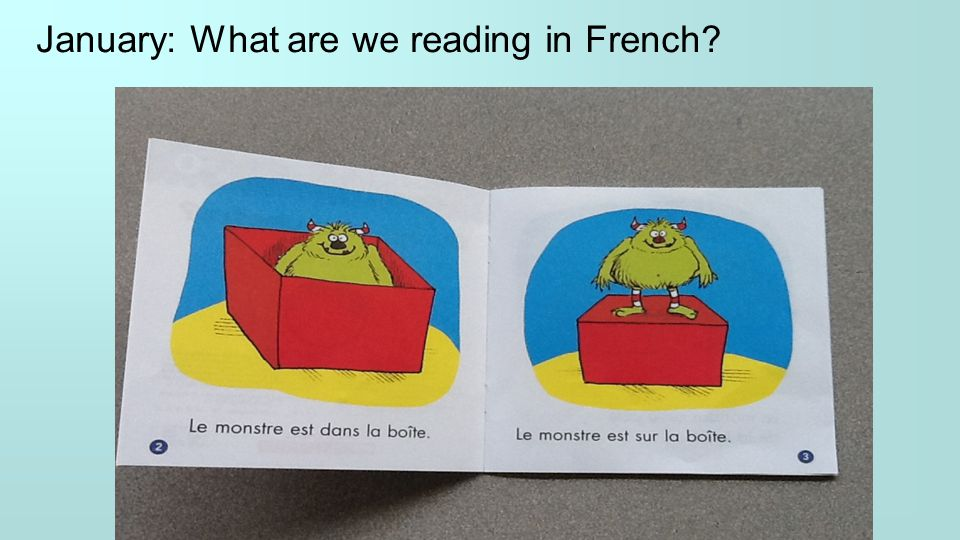 January: What are we reading in French