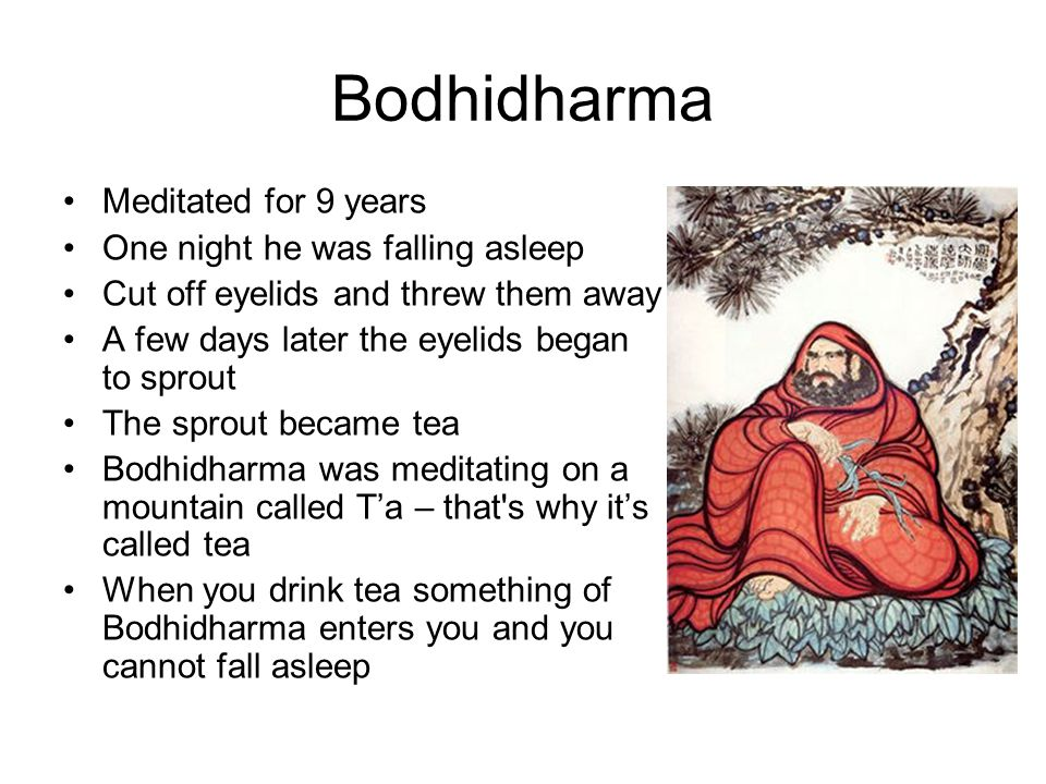 Bodhidharma Meditated for 9 years One night he was falling asleep