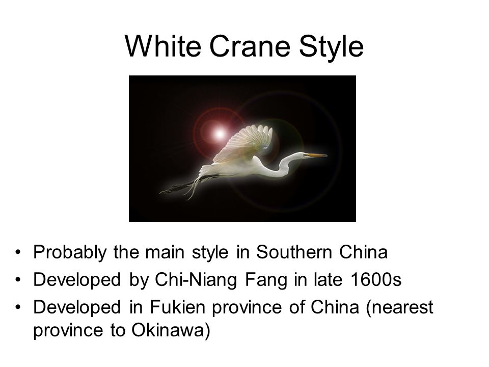 White Crane Style Probably the main style in Southern China