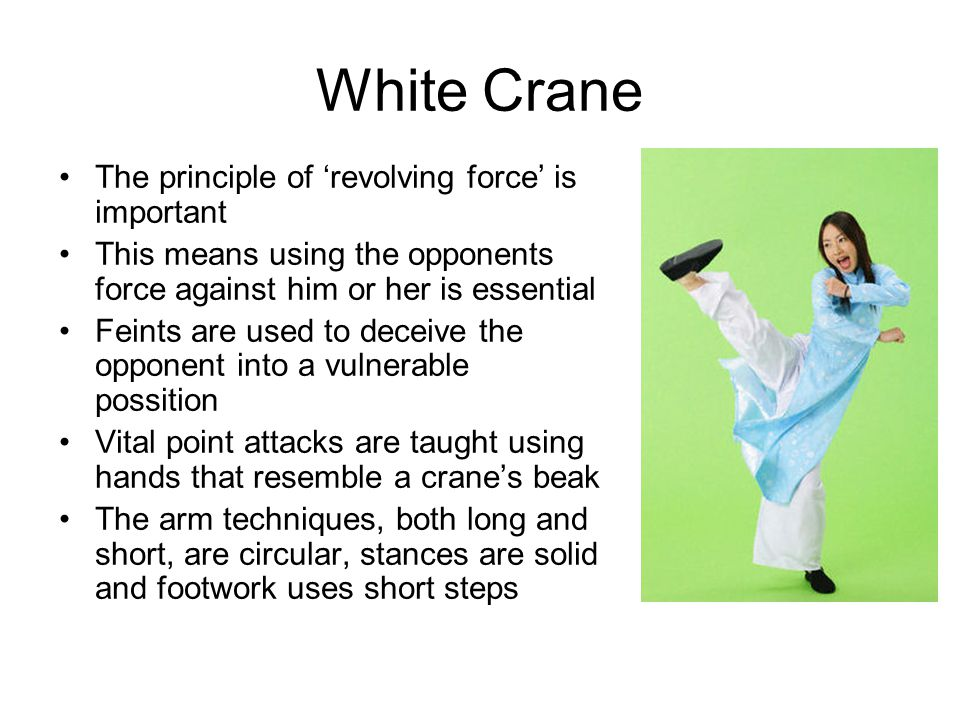 White Crane The principle of 'revolving force' is important