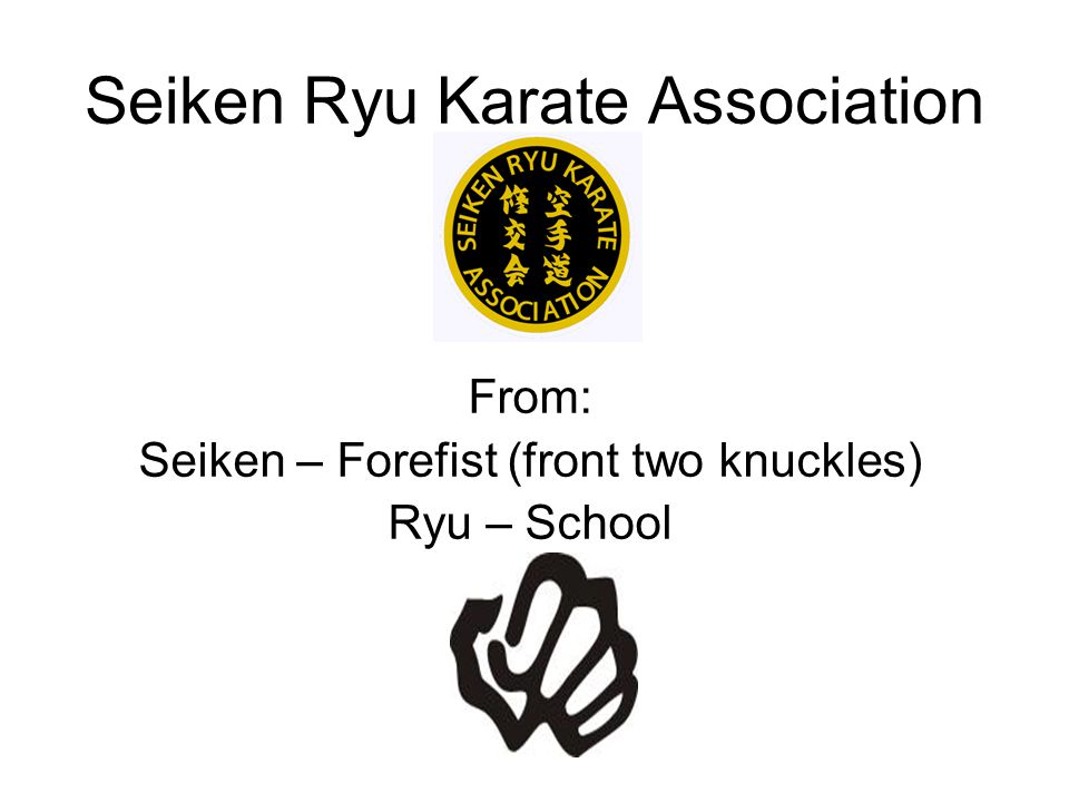 Seiken Ryu Karate Association
