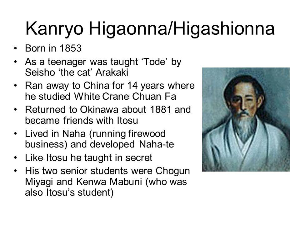Kanryo Higaonna/Higashionna