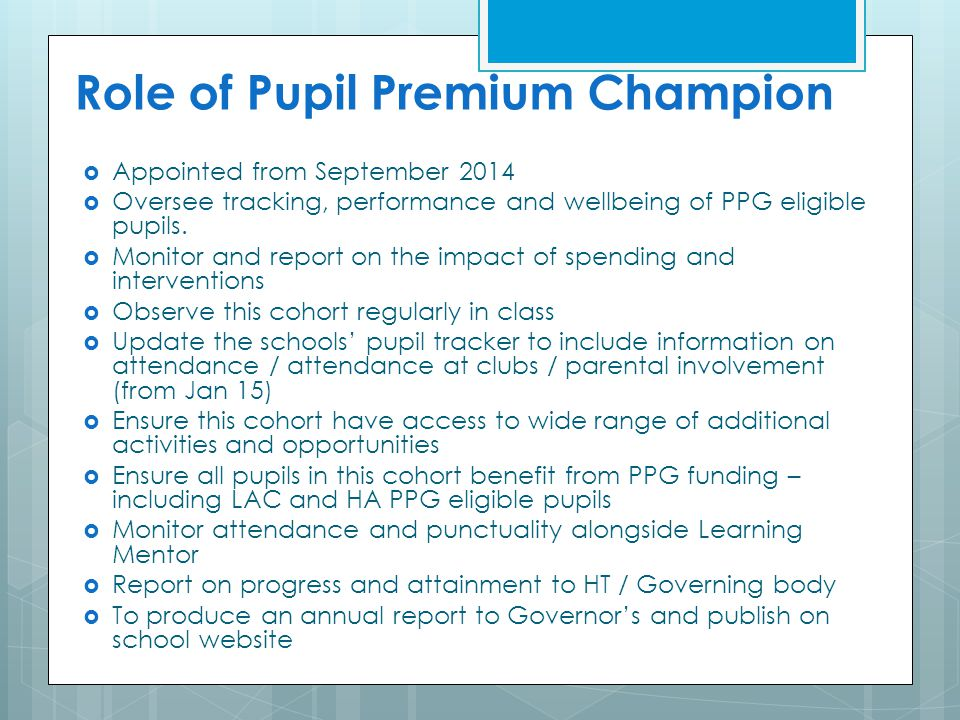 Role of Pupil Premium Champion
