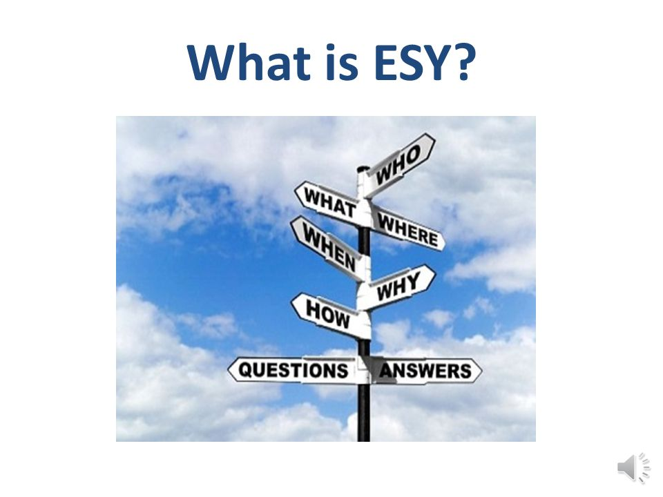 What is ESY