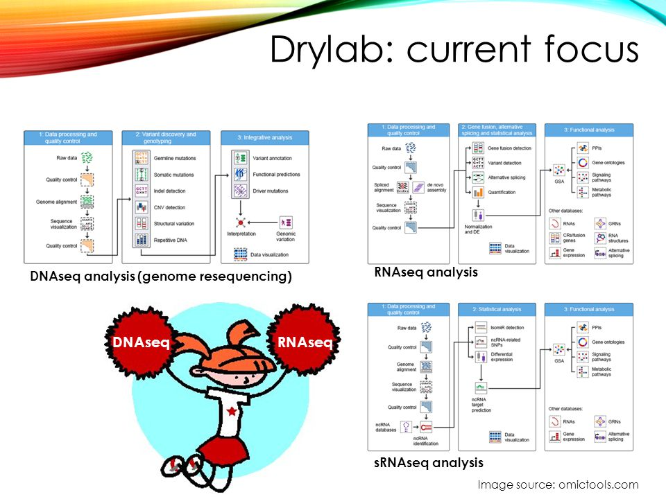 Drylab: current focus DNAseq RNAseq RNAseq analysis