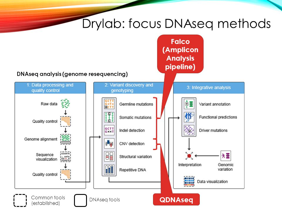 Drylab: focus DNAseq methods