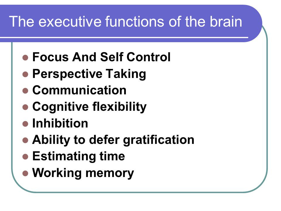 The executive functions of the brain