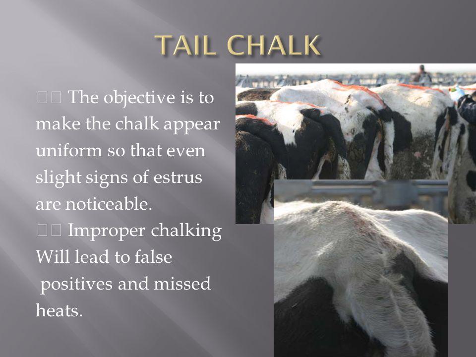 TAIL CHALK