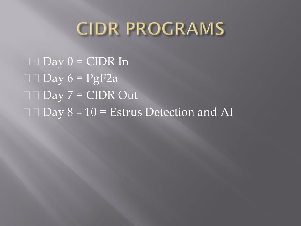 CIDR PROGRAMS  Day 0 = CIDR In  Day 6 = PgF2a  Day 7 = CIDR Out  Day 8 – 10 = Estrus Detection and AI