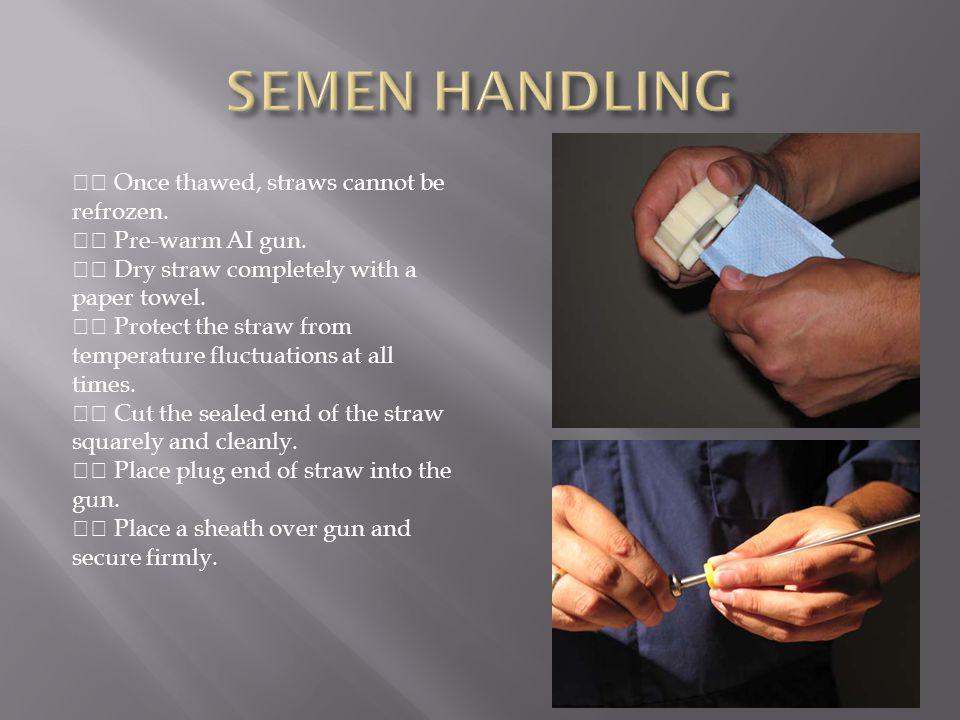 SEMEN HANDLING