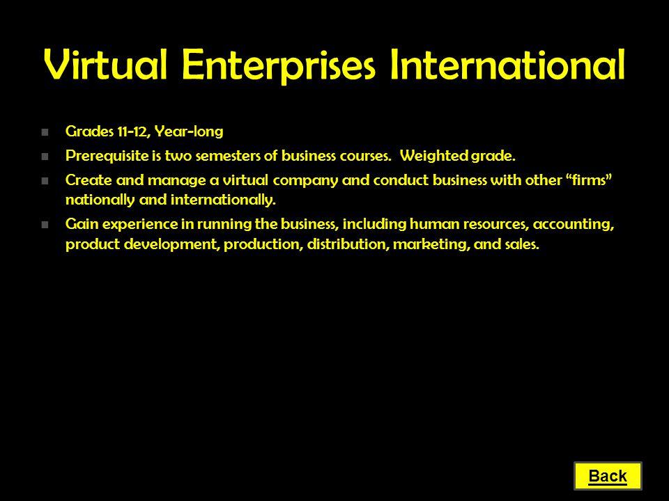 Virtual Enterprises International