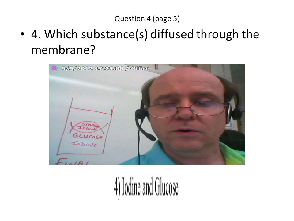 4. Which substance(s) diffused through the membrane