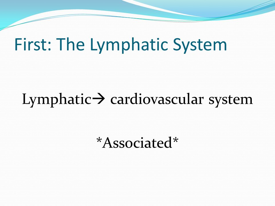 First: The Lymphatic System