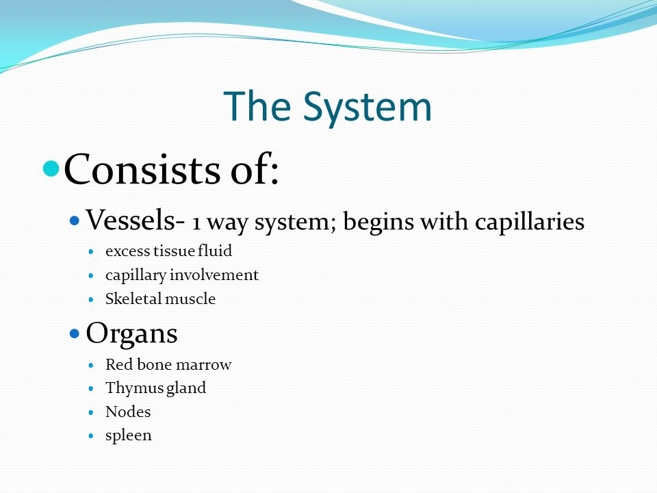 The System Consists of: Vessels- 1 way system; begins with capillaries