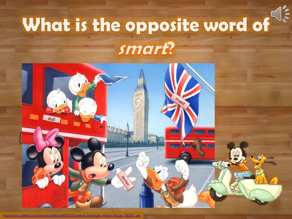 What is the opposite word of smart