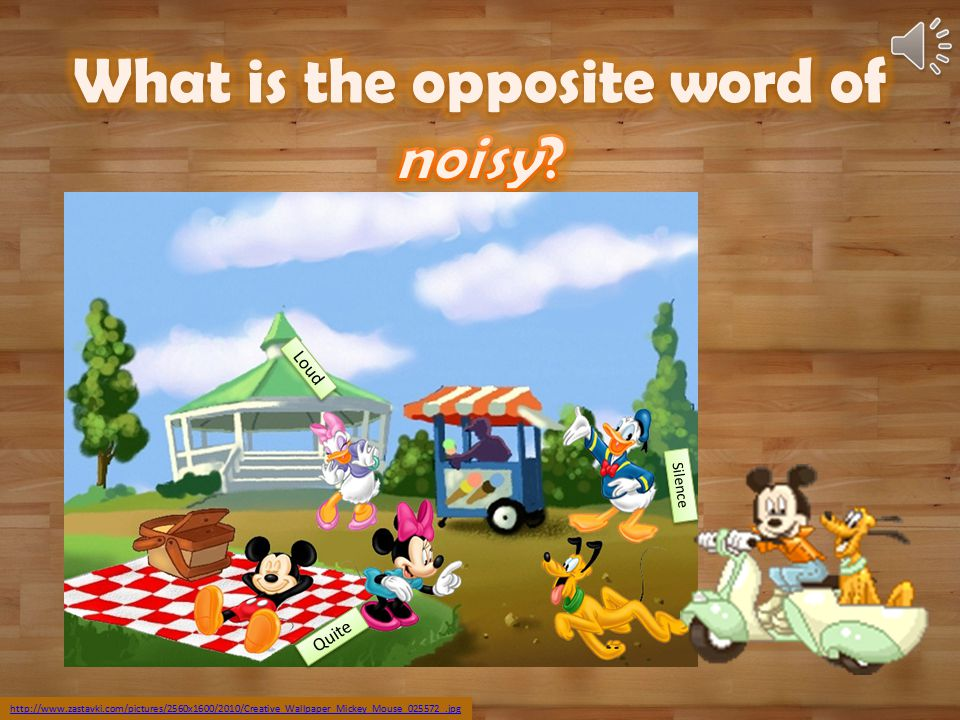 What is the opposite word of noisy