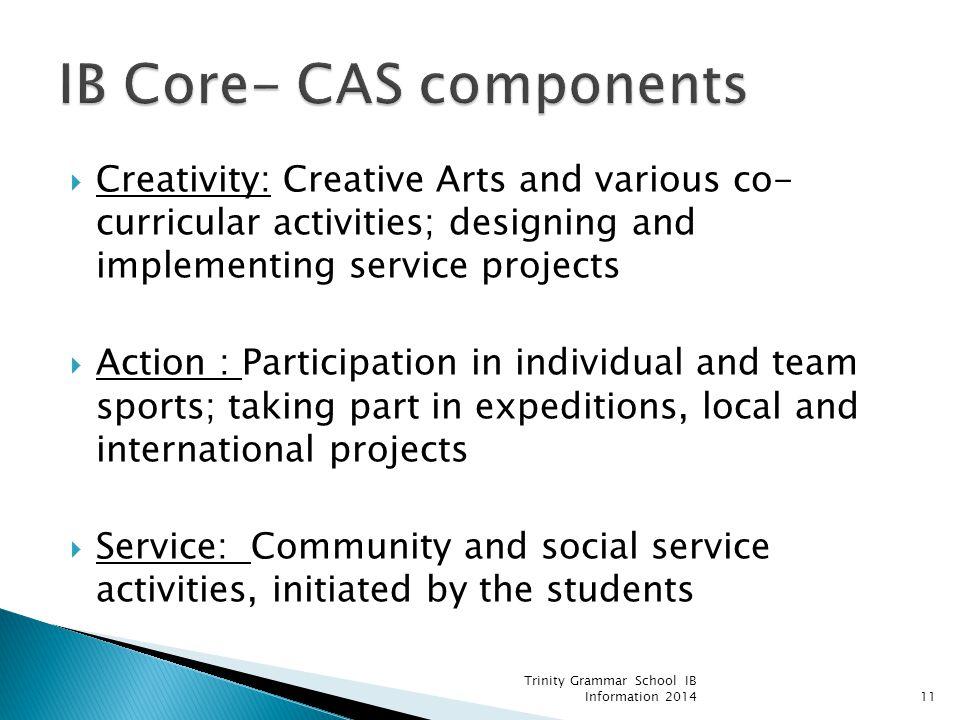 IB Core- CAS components