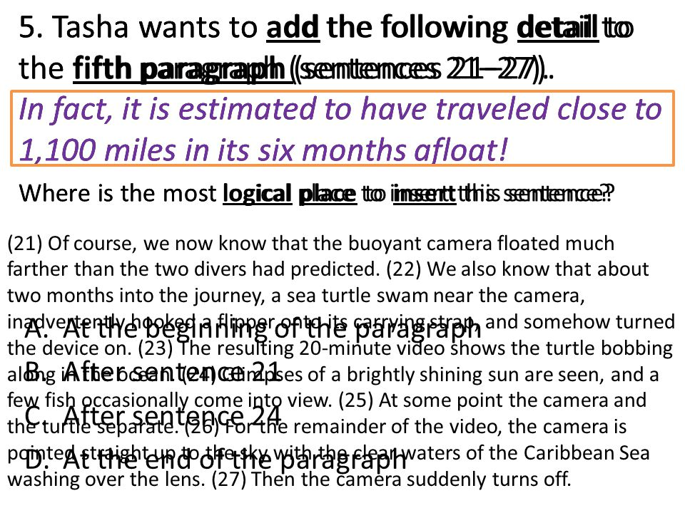 5. Tasha wants to add the following detail to the fifth paragraph (sentences 21–27). In fact, it is estimated to have traveled close to 1,100 miles in its six months afloat! Where is the most logical place to insert this sentence