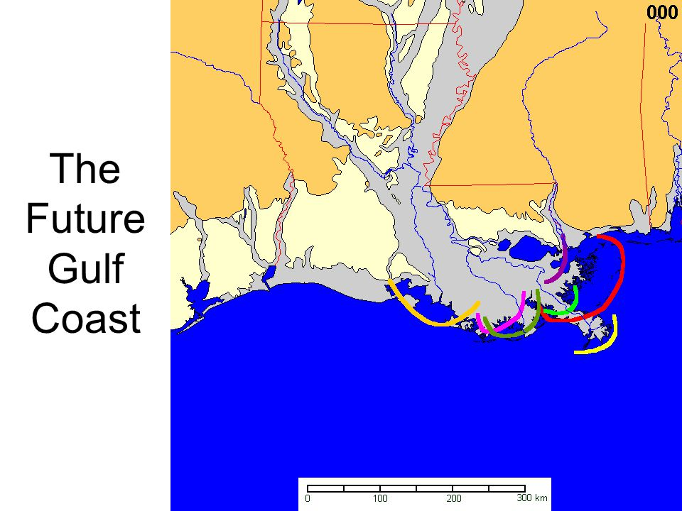 The Future Gulf Coast