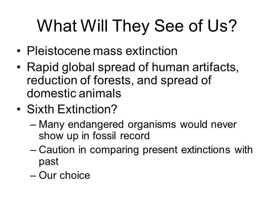 What Will They See of Us Pleistocene mass extinction