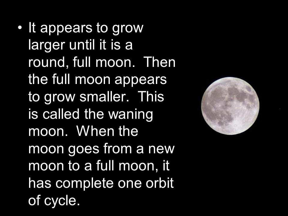It appears to grow larger until it is a round, full moon