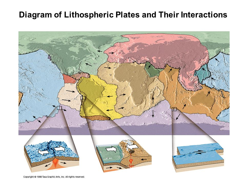 Diagram of Lithospheric Plates and Their Interactions