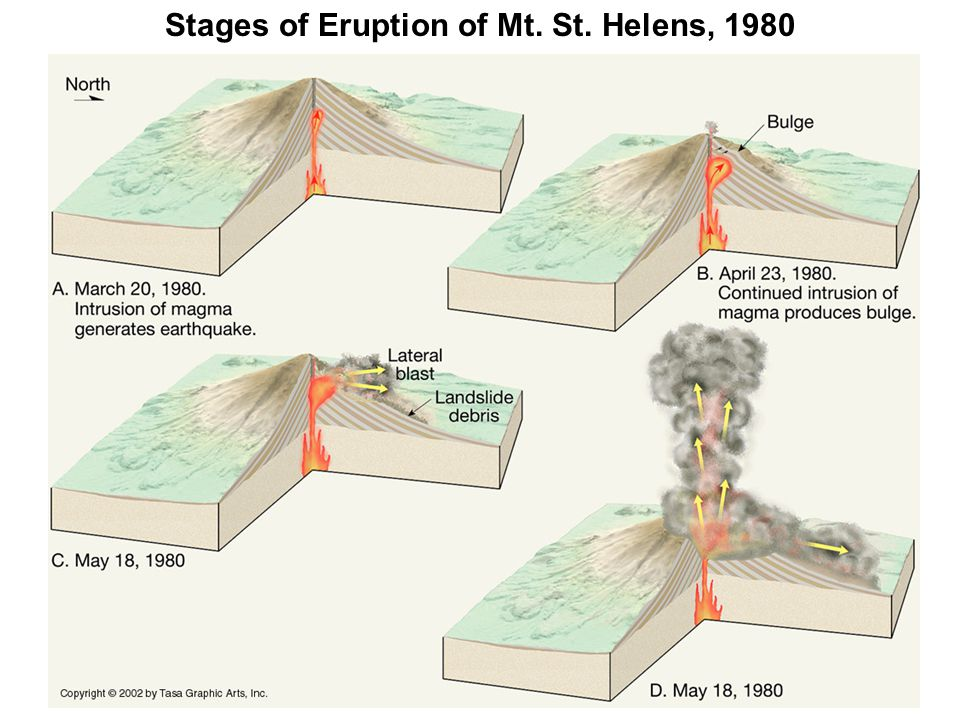 Stages of Eruption of Mt. St. Helens, 1980