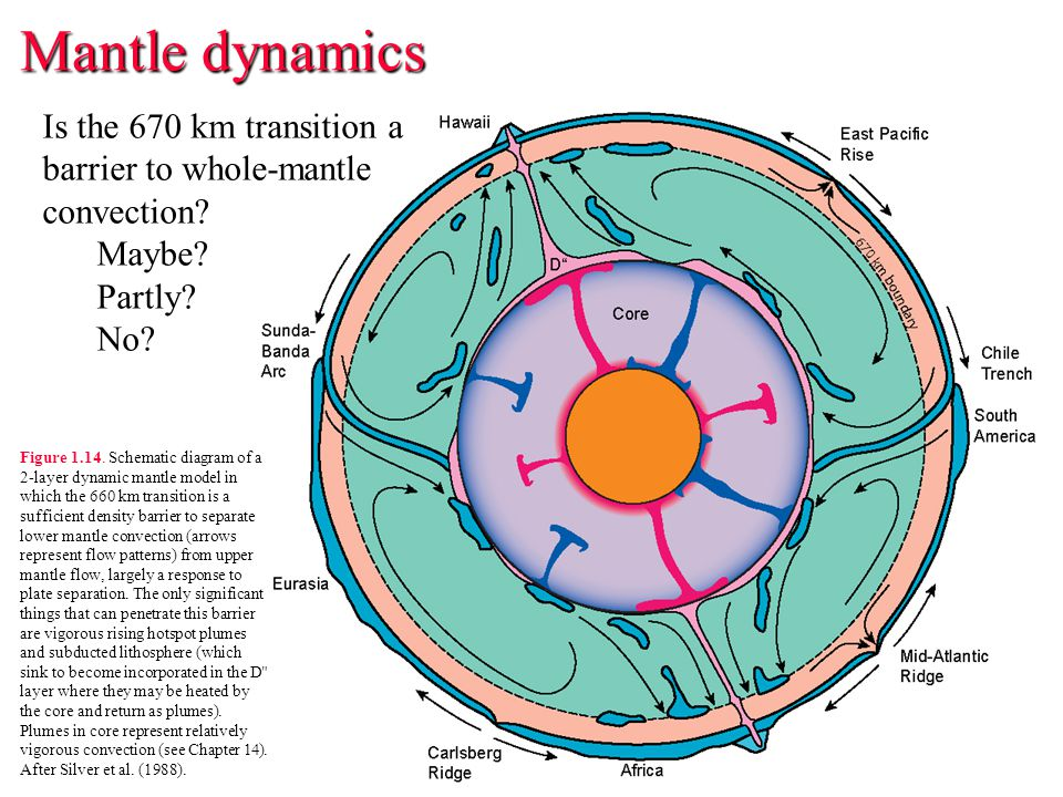 Mantle dynamics Is the 670 km transition a barrier to whole-mantle convection Maybe Partly No