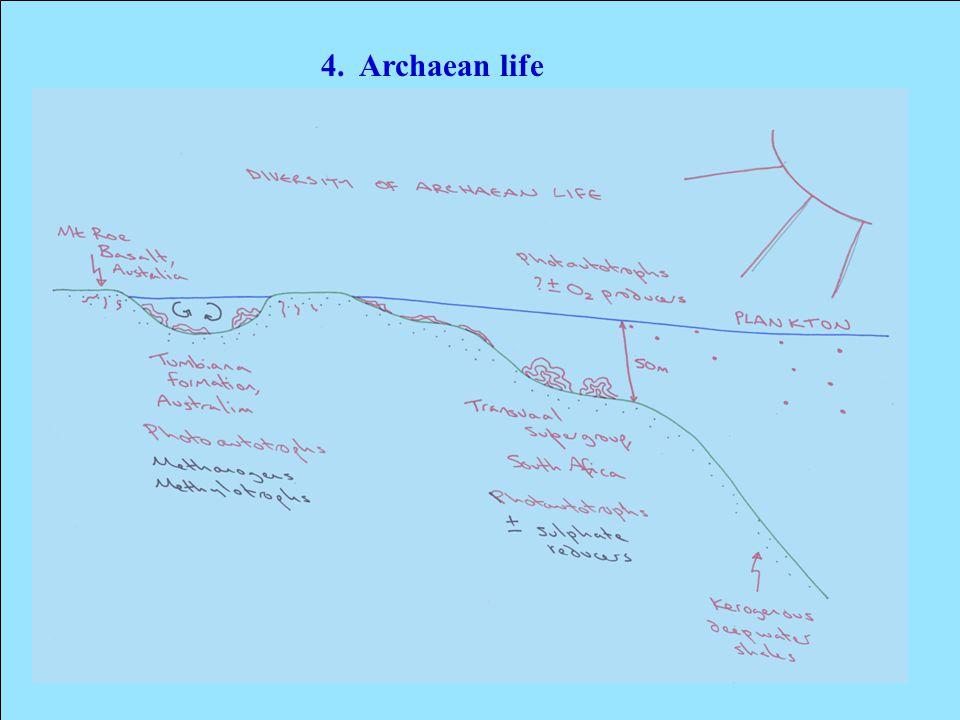 4. Archaean life