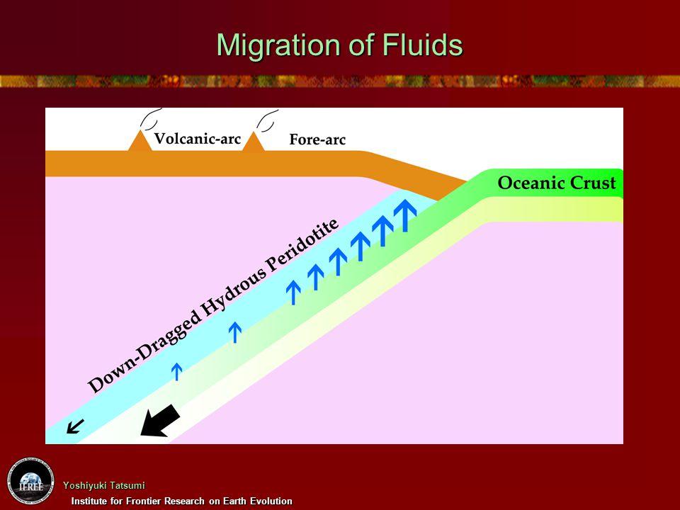 Migration of Fluids タイトルお願いします