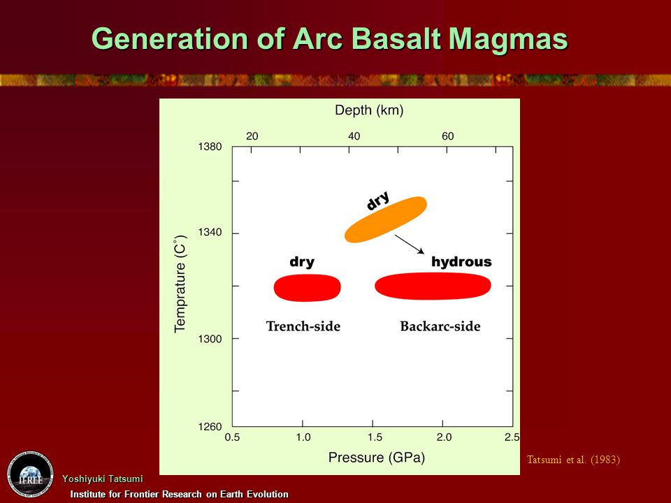Generation of Arc Basalt Magmas